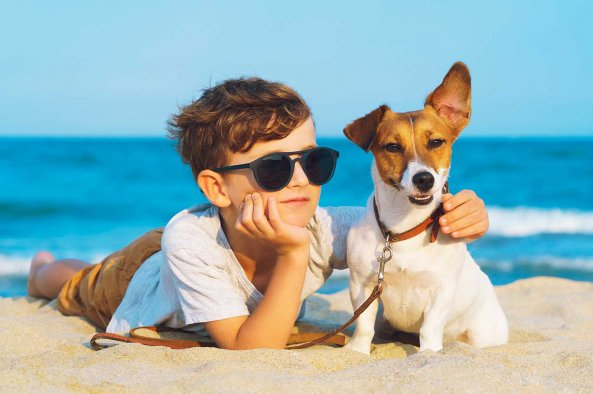 Pet Friendly OBX Vacation Rentals | Village Realty