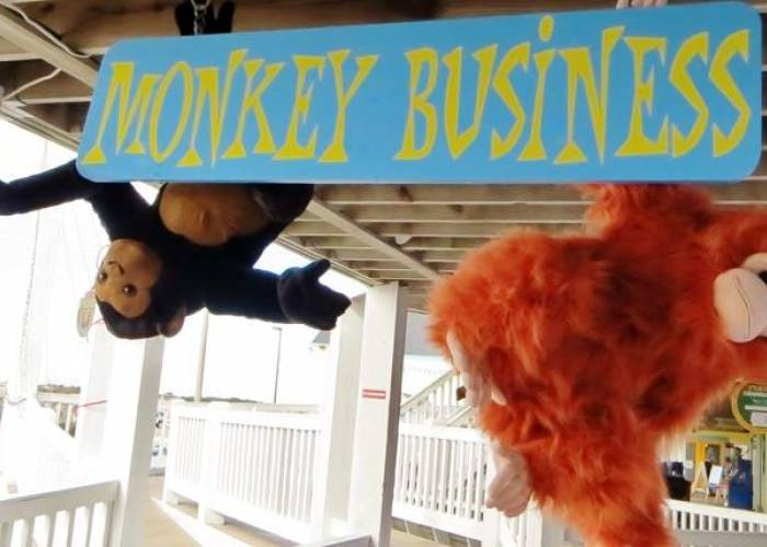 Monkey Business OBX formerly Build a Bear