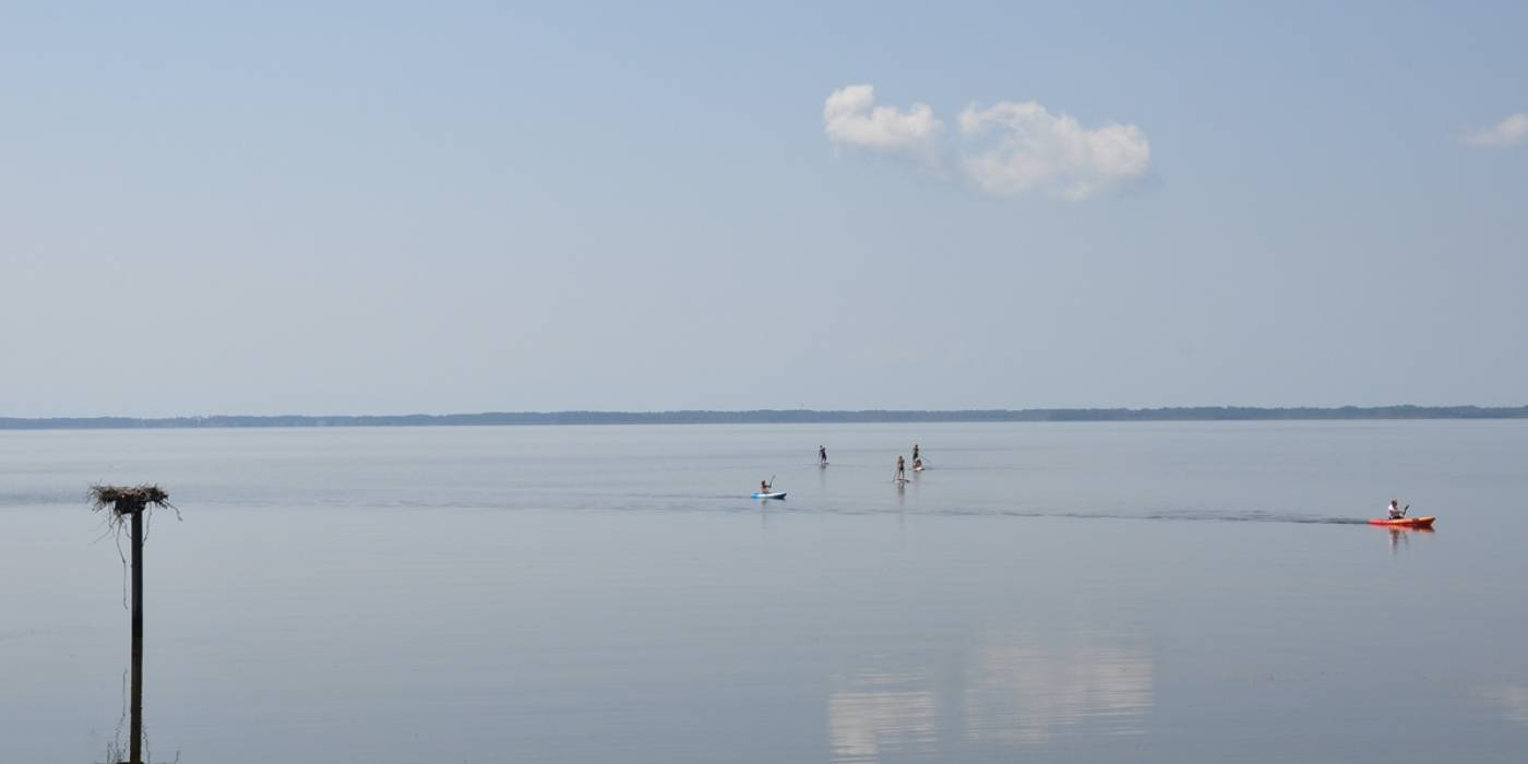 standup paddle boarders off cost in Duck