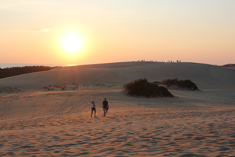 Climbing Jockey's Ridge OBX Sunset